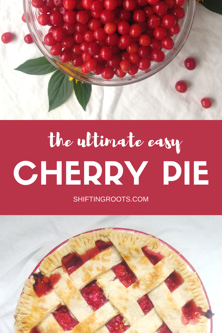 Each year I eagerly await cherry season so I can make my annual sour cherry pie.  It's such an easy recipe and is so worth the work of pitting the cherries.  This version uses sour cherries found in colder climates