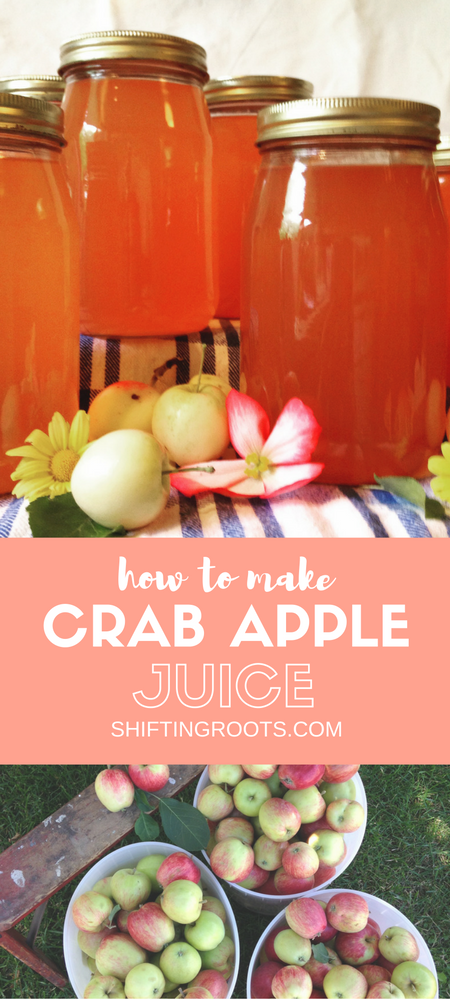 Learn how to make crab apple juice and finally use up all those crab apples you have no idea what to do with!