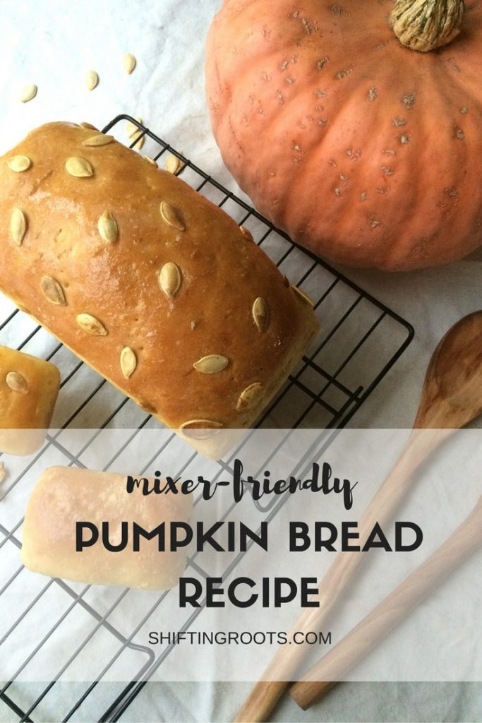 Here's a healthy Pumpkin Bread Recipe that's easy to make and fits in your Kitchen Aid Mixer. Shh! Your kids won't be able to tell there's pumpkin in it!!