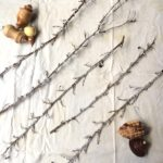 Easy, sparkly, winter twigs you can make with salt, glue, and sparkles.