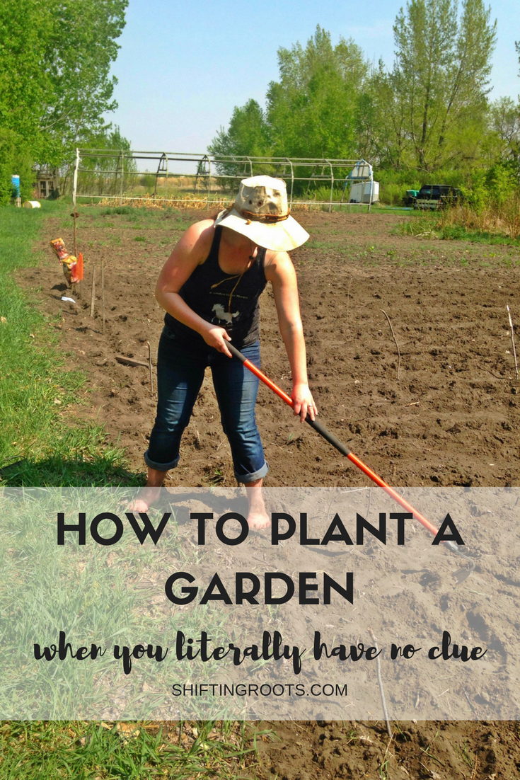 Finally a beginners guide to growing a vegetable garden in a cold climate in simple language! Lots of gardening tips to get started and learn how to grow your first garden.  How to prepare your soil, plant vegetables, things to know about soil and light and more! #gardening #vegetablegarden #planting #garden #zone3a #beginner #diy