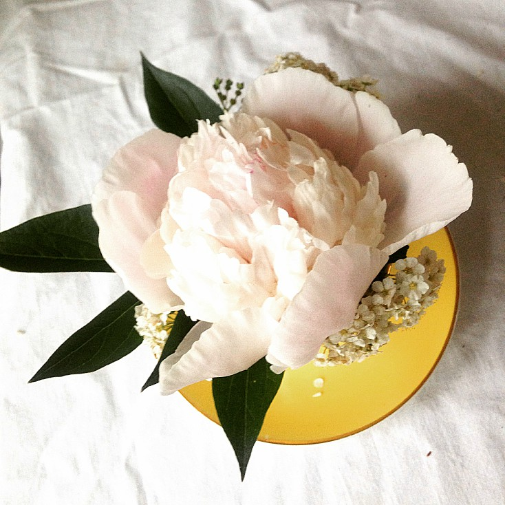 Easy peony in a teacup flower arrangement