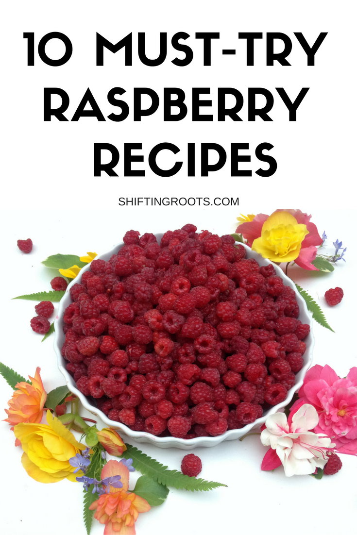 You've picked, cleaned, canned and frozen your raspberries...now what to make with all of them? Fear not! Here's 10 recipes the whole family will love this summer.
