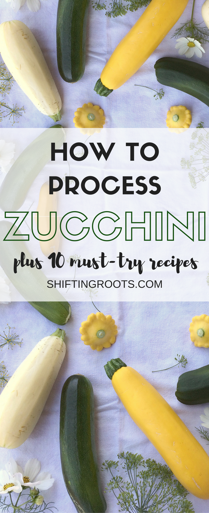 Everyone loves to grow zucchini and summer squash, but no one knows what to do with it.  Here's how to process it and 10 plus ways to use it in soups, suppers, desserts, breads and more!