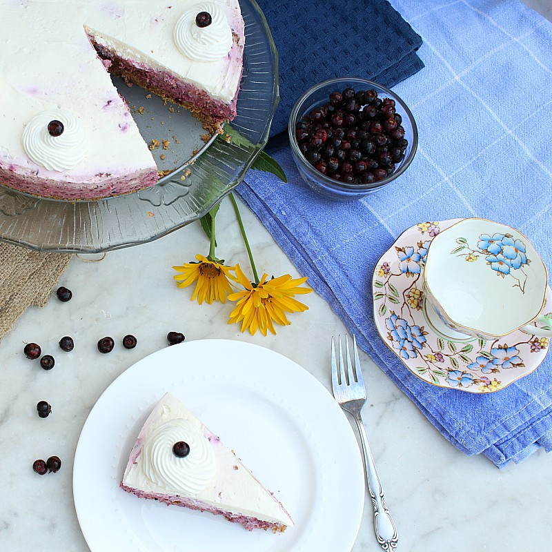 No Bake Saskatoon Berry Cheesecake