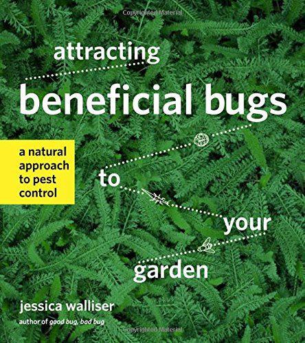 Organic Gardening The Natural No Dig Way