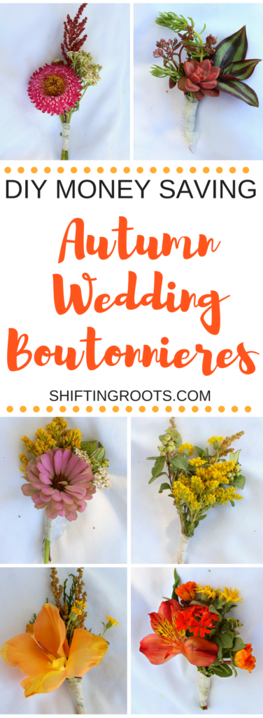 Your Autumn wedding Boutonnieres are about to get more interesting.  I've come up with seven money-saving unique boutonnieres, perfect for a fall wedding.  Use strawflowers, dahlias, zinnias, succulents, yarrow, goldenrod, and even weeds from the ditch to create gorgeous, DIY boutonnieres that are way easier than you think.