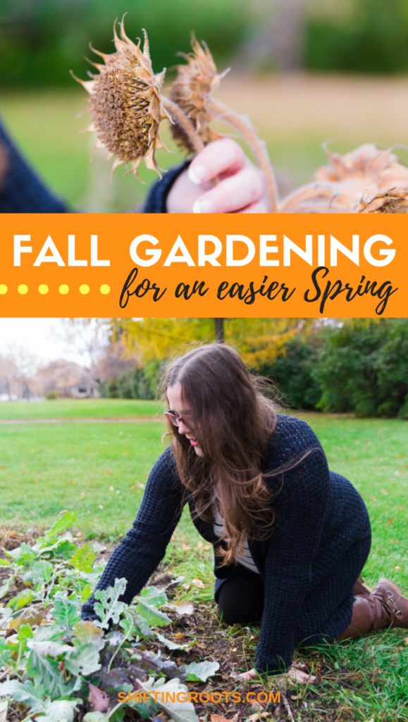 Fall is here but gardening doesn't stop as soon as Autumn begins!! Here's some good tips for beginners on what do with vegetables, perennial flowers, and annual flowers now, so that you'll have an easier Spring.  Less work in the garden?  Yes please!  #gardening #tips #beginners #fall #autumn #garden #vegetables #perennials#chores #tasks