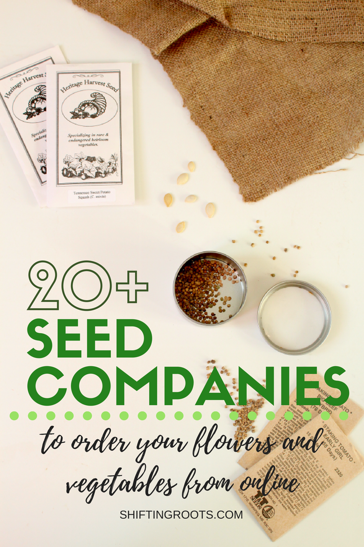 Are you a beginner gardener with no idea where to start?  Whether you're looking for flowers or vegetables, heirloom seeds, organic seeds, wildflower seeds for your xeriscape, or hardy fruit trees, you'll find something in this list.  Order early so you can try seed starting before it's gardening season! #gardening #seedstarting #seeds #startingseeds #flowers #vegetables #landscaping #seedcompanies