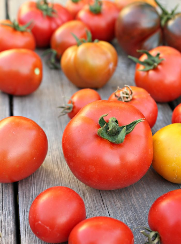 How to Pick the Best Tomato Varieties for Your Garden This Year