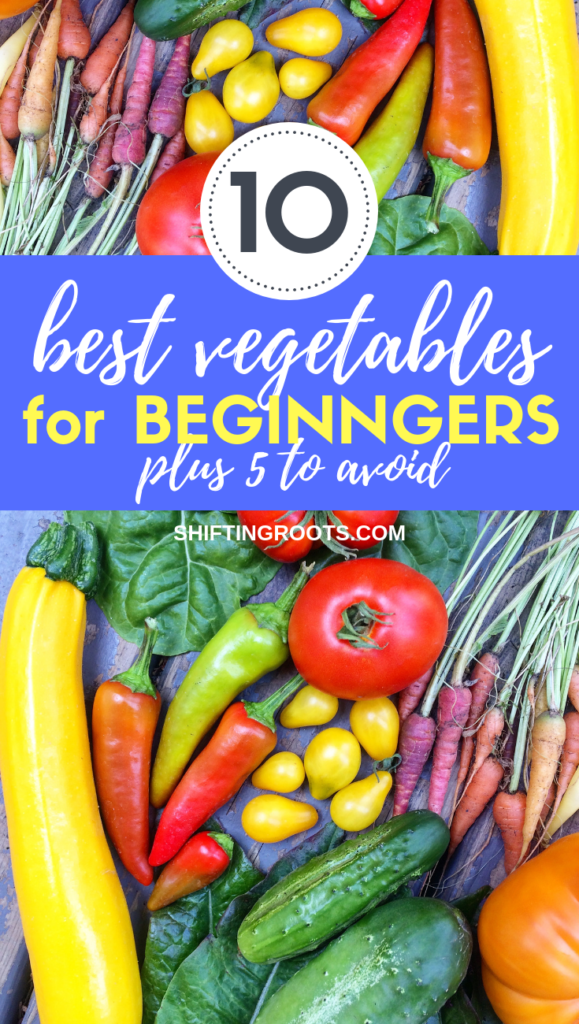 Planting your first garden?  Here's 10 of the easiest and best vegetables for beginners to grow, plus 5 surprisingly hard ones to avoid.  #gardening #beginner #ideas #vegetables #vegetablegarden #garden