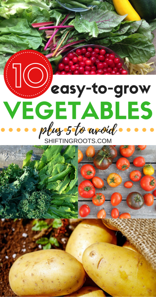 Planting a garden for the first time can be both exciting and terrifying.  I've compiled 10 vegetables that are easy to grow for the beginner gardener, plus 5 you'll want to avoid. Learn how to grow your own food and have the best chance of success in your garden this spring. #gardeningtips #vegetablegardening #easytogrow #beginnergardener #howtogrowvegetables #gardenvegetables #vegetablegrowing