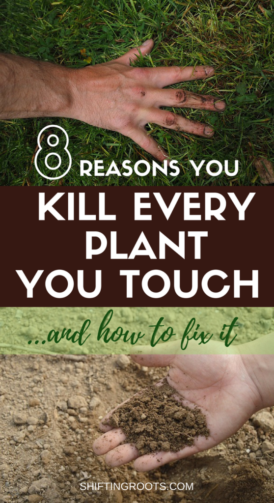 Are you one of those beginner gardeners who kills every plant you touch? Turn your brown thumb green with these 8 troubleshooting tips and ideas.  You'll be on your way to a green thumb in no time! #gardening #tips #gardeningtips #beginnergardening #crazyplantlady #vegetablegardening #flowergardening