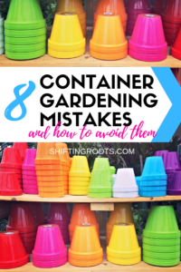 Container gardening in pots on your patio seems easy, but it can be tricky for beginners!! Here's 8 mistakes to avoid to keep your vegetables, flowers, and herbs, alive all season. #containergardening #ideas #canada #containers #pots