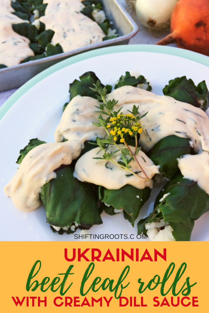 Ukrainian beet leaf rolls with creamy dill sauce will be your new vegetarian comfort food. It's an easy cabbage roll recipe stuffed with rice and baked into a delicious casserole--just like Mom used to make. #casserole #beetleafrolls #cabbagerolls #Ukrainiandishes #Ukrainiancuisine #vegetariancasserole #vegetarian #casserole