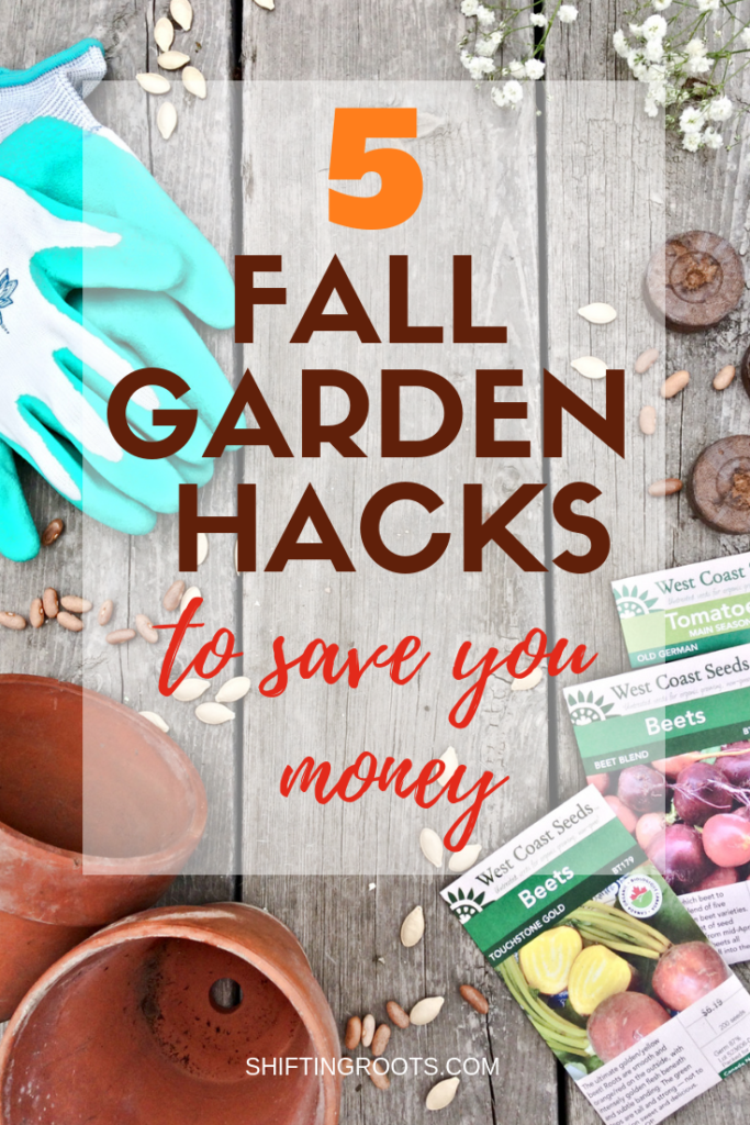 Looking for a way to be more frugal in your garden? I'll share my best tips and ideas for beginners on saving money in their vegetable or flower garden. Here's to gardening on a budget!! #gardening #budget #frugal #hacks #tips #ideas #for beginners #vegetable #flower