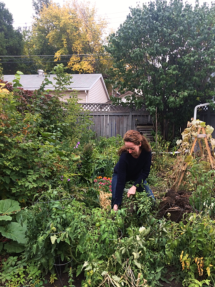 No time do a fall garden clean up? Here's some good tips on which jobs you must do with your vegetables and perennial flowers, and which chores you can skip until Spring. #gardening #tips #beginners #fall #autumn #garden #vegetables #perennials #chores #tasks