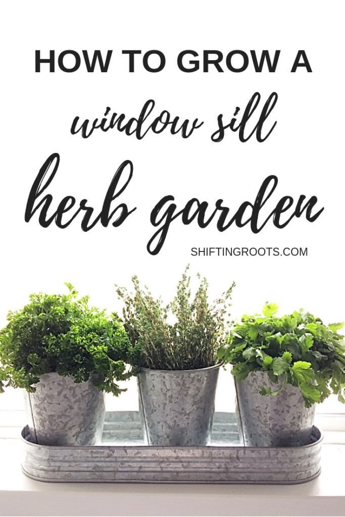 Wouldn't you love to clip fresh herbs from your kitchen windowsill?  Here's how to start a diy indoor herb garden--even if you live in an apartment or small space, or are a complete beginner.  #herbs #herbgarden #indoorgarden