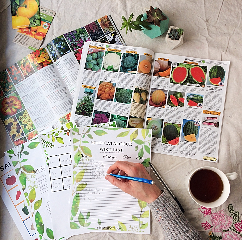 Take the stress out of garden planning with these 10 questions and a free garden planner printable.  Now I can finally get my layout and design figured out for my vegetables and flowers. #gardening #gardenplanner #freeprintable