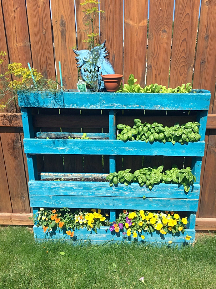 Looking for some ideas to design your patio, backyard, or other small space garden?  Here's some low maintenance ideas for growing vegetables and flowers--many of which are perfect if you're on a budget!  This pallet planter was so cheap and easy to put together. #garden #design #ideas #onabudget #smallspace #patio #backyard #pallet