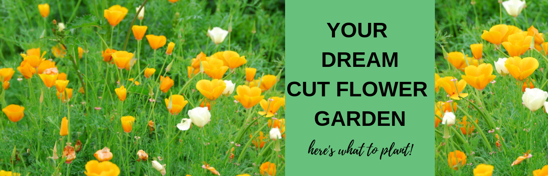 YOUR DREAM CUTFLOWER GARDEN