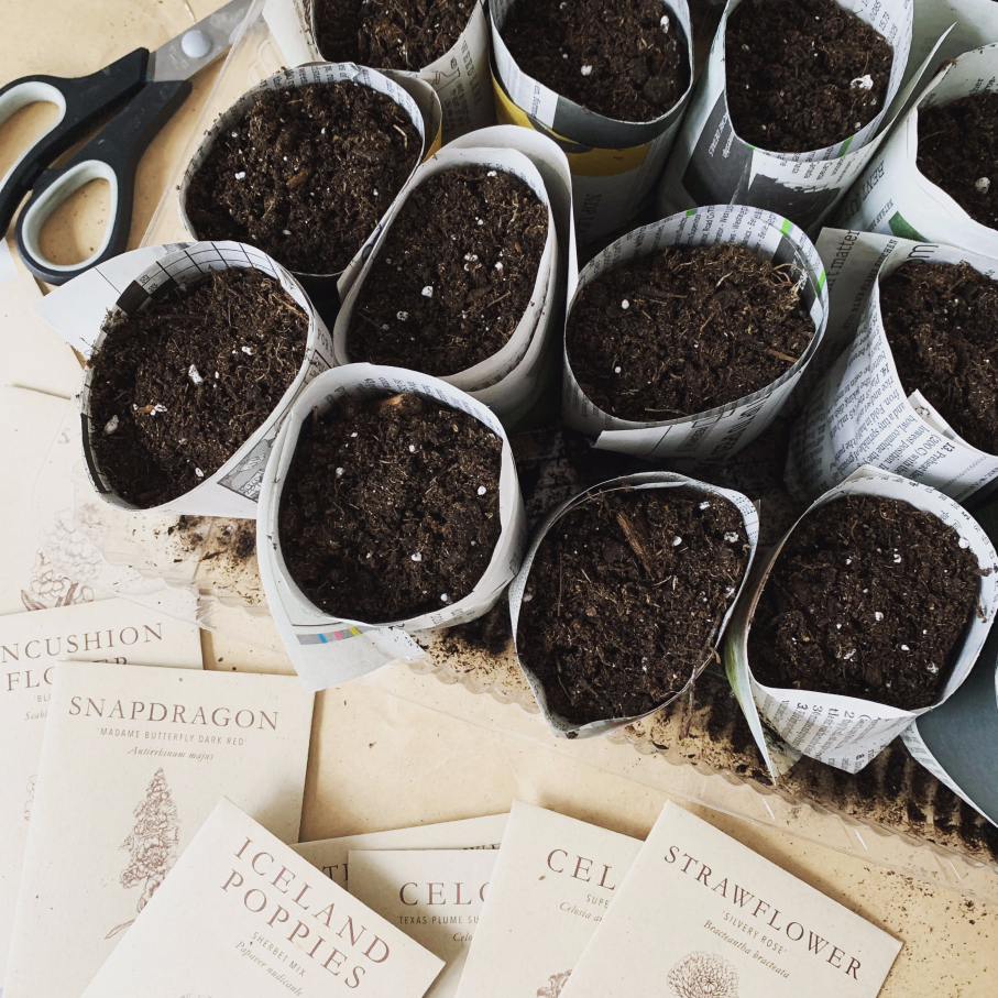 Ditch the plastic and make these diy paper pot containers out of newsprint instead.  They're a super easy gardening project for your indoor seed starting that's zero waste and compostable. #seedstarting #gardening