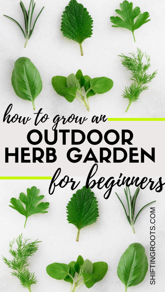 I really want fresh cut herbs in my backyard!  Here's how to grow a DIY herb garden in a raised bed--with lots of tips and growing suggestions for beginners. #herbgarden #forbeginners