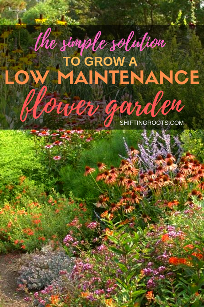 How do you create a low maintenance, drought-resistant flower garden, encourage pollinators, and add beauty to your backyard landscape? The solution is easier than you think with native perennials! #flowers #landscaping #nativeplants #zone 3 #canada