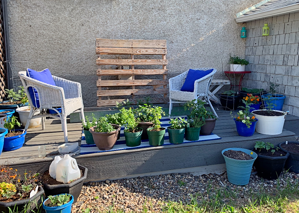 A patio container vegetable garden decorated with blue and white accents. #backyard #patio