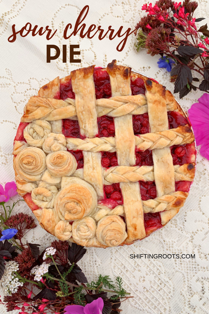 Irresistible sour cherry pie is made with an easy tart cherry pie filling and captures the fresh taste of summer!  Make this recipe with fresh or frozen cherries.  Pre-made pies also freeze well. #sourcherries #tartcherries #pie #filling #recipe