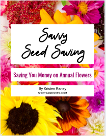 Savvy Seed Saving Annual Cut flowers