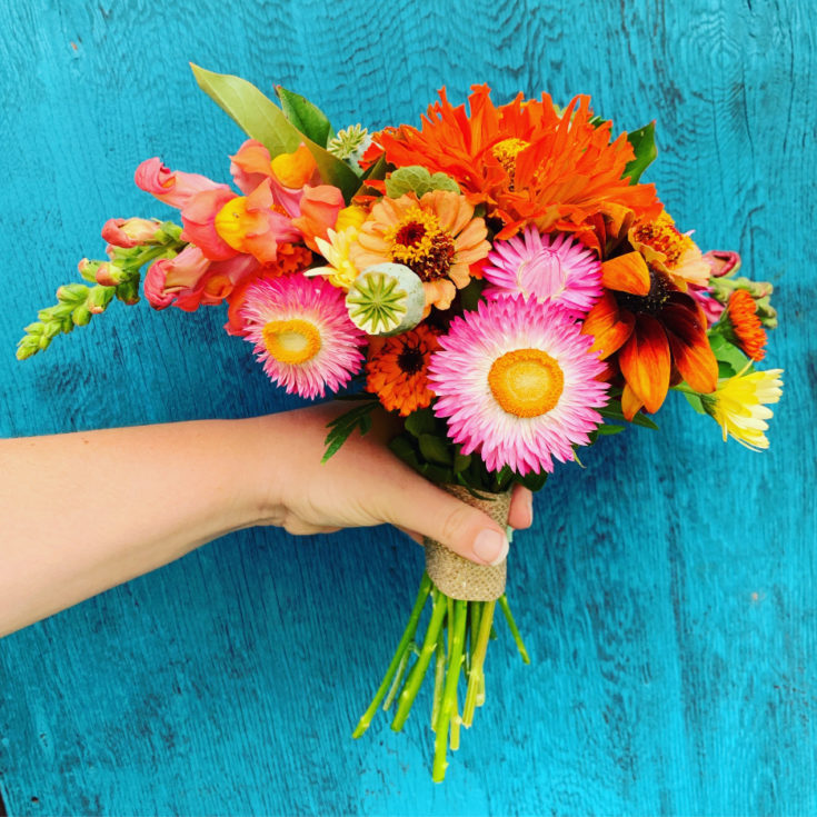 The Best Companies to Purchase Cut Flower Seeds for your Backyard Flower Farm