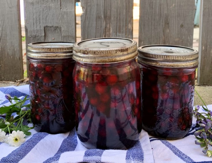 Canned Saskatoon Berries