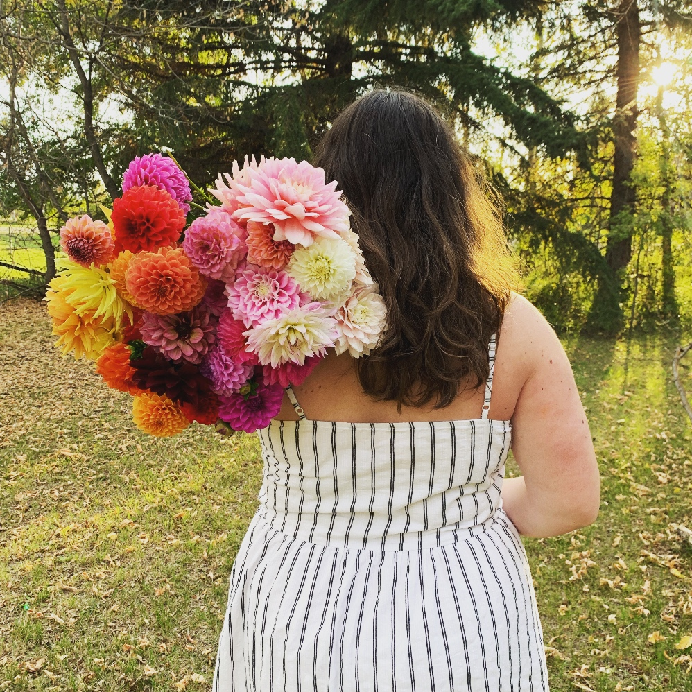 Rainbow bouquet of dahlias thrown over a woman's shoulder.