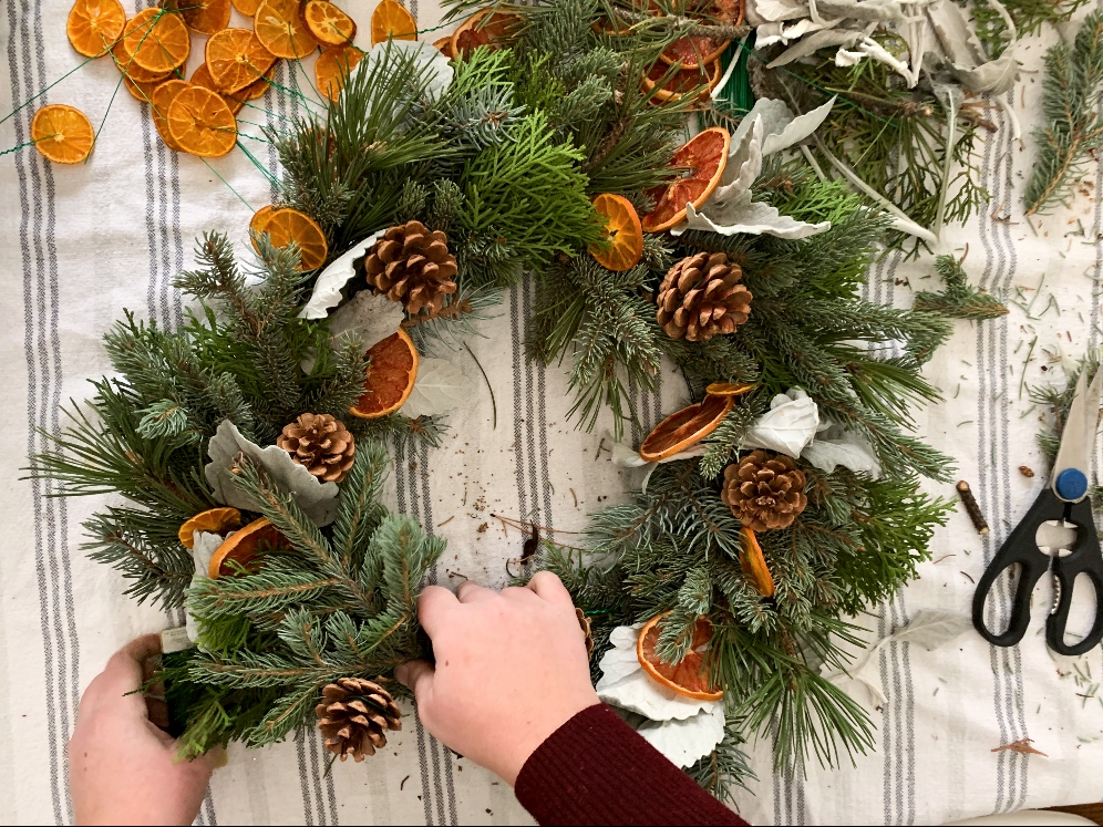 Using dried oranges and grapefruits to create a wreath with natural greens.