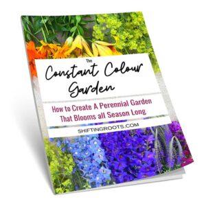 Constant Colour Garden