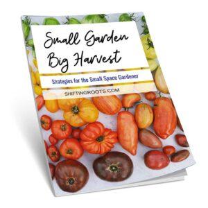 Small Garden, Big Harvest